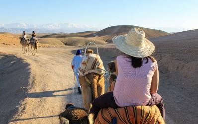 Excursion d'une journée au désert d'Agafay